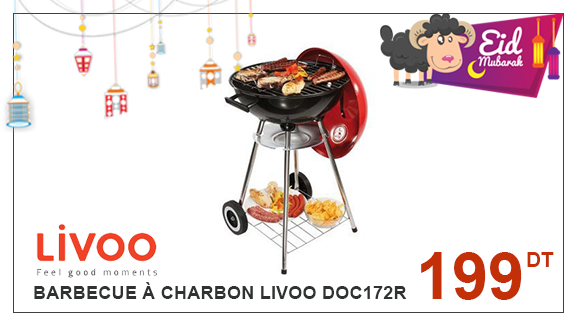 Barbecue à Charbon LIVOO DOC172R